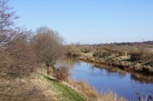 Lachsfluss-Varde-Au